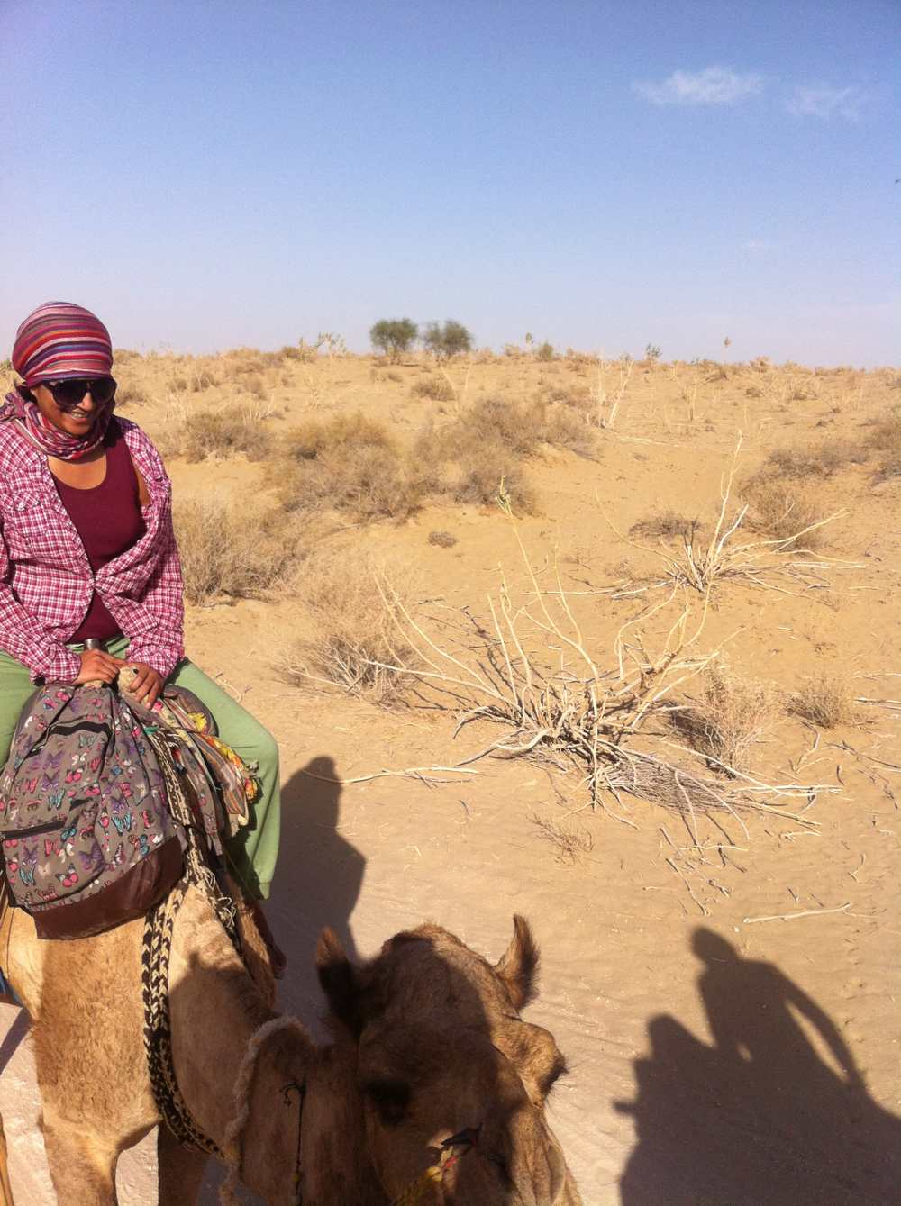 Anu and camel
