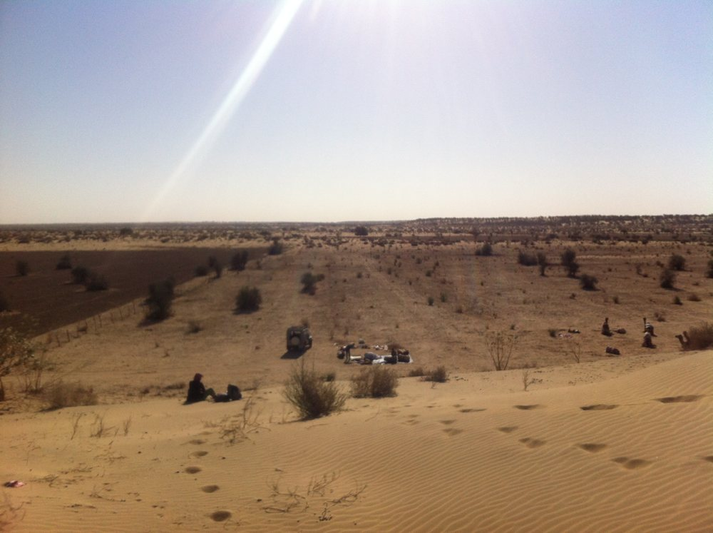 Camel safari camp spot