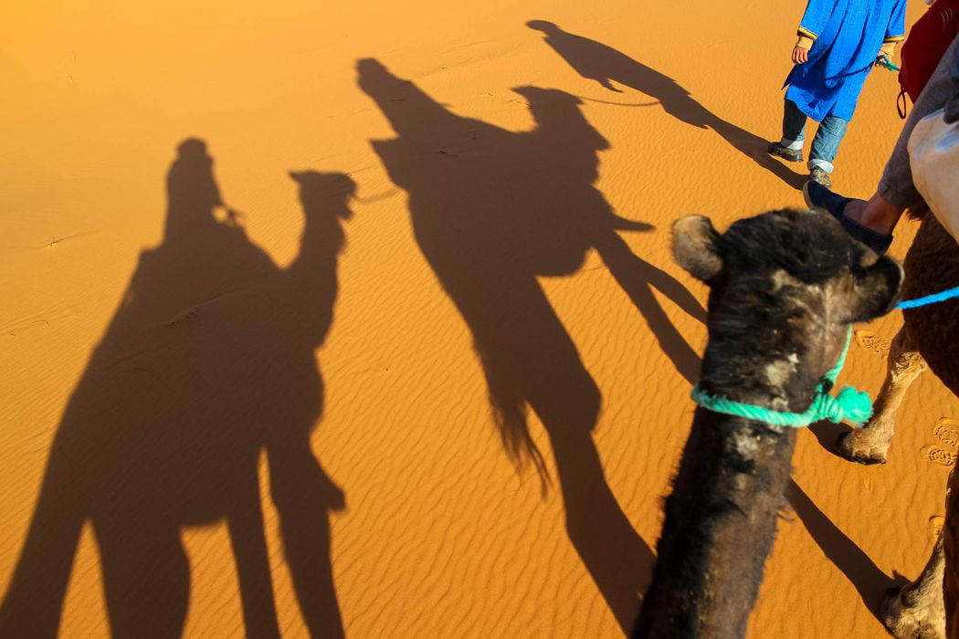 Riding the camel in the Sahara desert